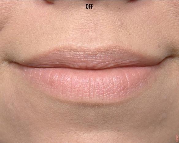 Kiko Frosted Lipstick.045
