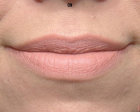 Kiko Frosted Lipstick.046